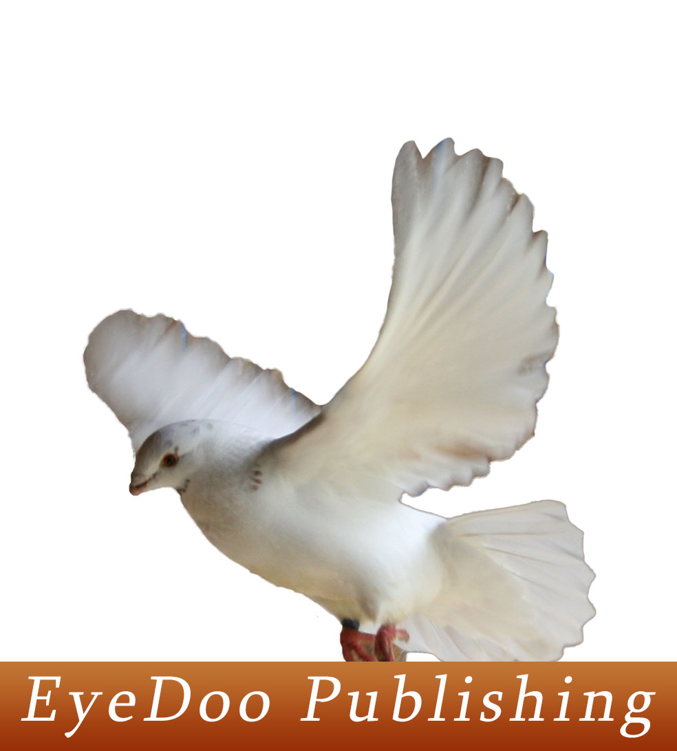 EyeDoo Publishing